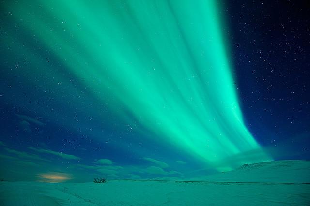 borealis polaris