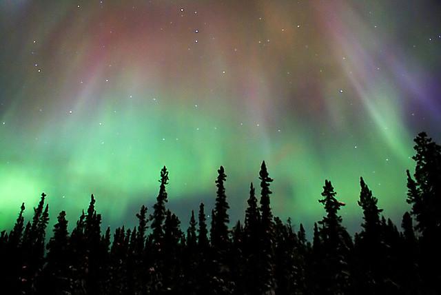 suma polarna svetlina